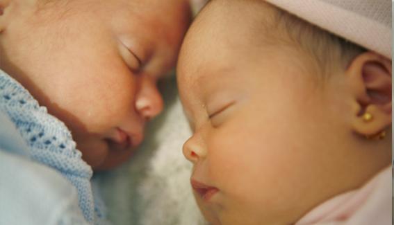 a les 24 hores de néixer